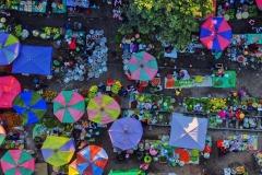 FIAP HM Ribbon-Wei Ye-Colorful market-China