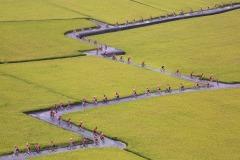 FIP HM Ribbon-LING JYI CHAO-Cycling team-Taiwan, Province of China