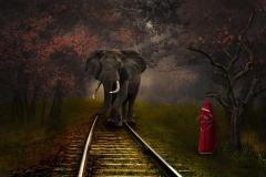 GPU Gold-Mahaboob Rishad Ashraf-RAIL LINE-RAIL LINE-RAIL LINE-Bangladesh