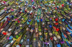 FIAP Silver-SON HUY NGUYEN-COLORFUL FLOATING MARKET-Viet Nam